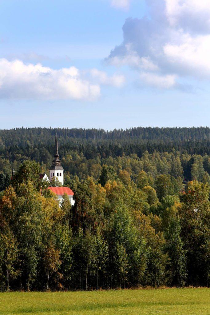 Bos-met-Kerk-in-Zweden